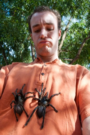 The live tarantulas someone put on my shirt just before I ate a dead one.