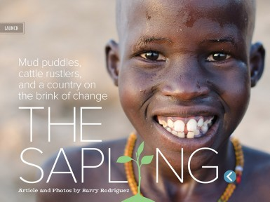 The Sapling, one of the feature articles in this month's magazine.