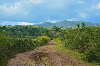 The Cuban country-side