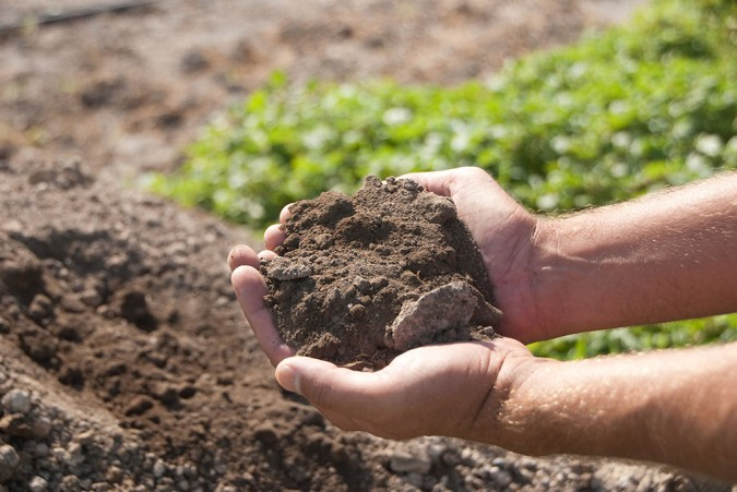 This recycled soil has the potential to grow all the vegetables the villages need.