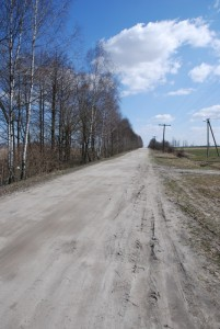 A peaceful country road, home to countless nightmares and near-death experiences...