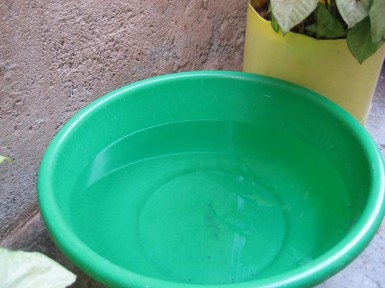 During the rainfall, my neighbors put out every basin and bucket they had to catch the water.