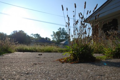 Like many parts of Indianapolis, the southeast district is a mix of life and decay.