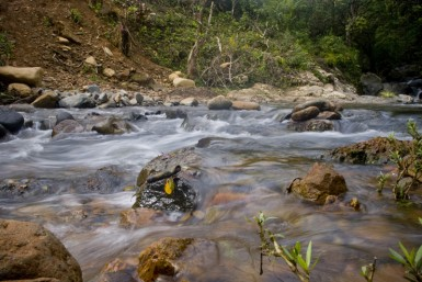 I crossed many rivers in Panama, but only a few with dry feet at the end...
